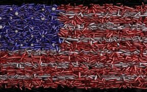 Gun law in America is a sign of freedom or disaster?