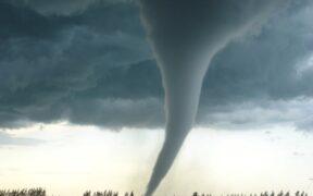 Georgia Tornado Warning: Tornados watch has been declared for parts of metro Atlanta.