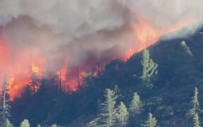 Wildfire in the Angeles National Forest