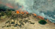 Firefighters worked to extinguish a brush fire in Chula Vista