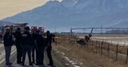 Detectives have approved that a gyrocopter crash in Heber Valley airport has left a male pilot dead.